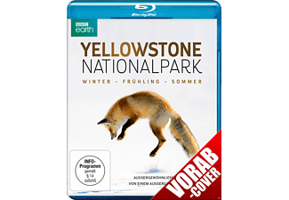 Yellowstone Nationalpark - (Blu-ray)