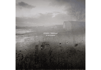 Joshua Trinidad - In November - (Vinyl)