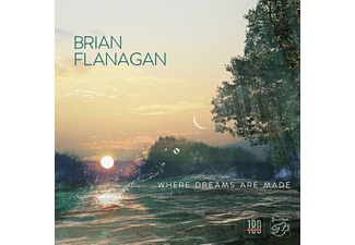 Brian Flanagan - Where Dreams Are Made - (Vinyl)