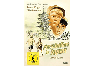 Verschollen in Japan - (DVD)