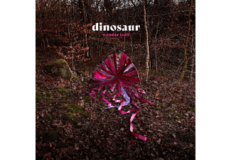 Dinosaur Jr. - Wonder Trail - (Vinyl)