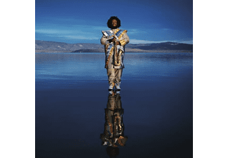 Kamasi Washington - Heaven & Earth - (Vinyl)