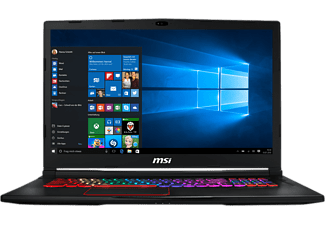 MSI Gaming Notebook GE73 8RF-009DE Raider RGB (0017C5-009)