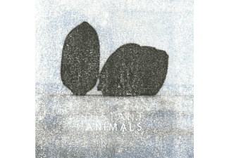 Distant Animals - Lines - (Vinyl)
