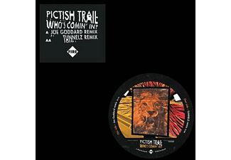 The Pictish Trail - Who's Comin' In? - (Vinyl)