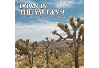VARIOUS - DOWN IN THE VALLEY 2 - (Vinyl)