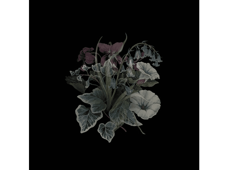 Nhor - Wildflowers (2LP-GTF/180 GR/Black+Poster) [Vinyl]