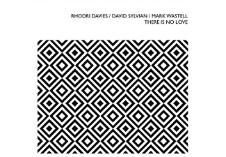Davies,Rhodri/Sylvain,David/Wastell,Mark - There Is No Love - (CD)