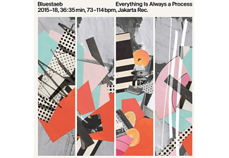 Bluestaeb - Everything Is Always a Process (LP+MP3) - (LP + Download)