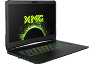 XMG PRO 17 - M18tdw, Gaming Notebook, Core™ i7 Prozessor, 8 GB RAM, 250 GB SSD, GeForce® GTX 1060, Schwarz