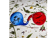 Dirty Projectors - Lamp Lit Prose [CD]