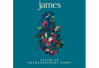 James - Living in Extraordinary Times - (Vinyl)
