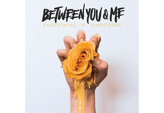 Between You & Me - Everything Is Temporary (Vinyl) [Vinyl]