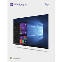 Windows 10 Professional 32-Bit/64-Bit USB Flash Drive
