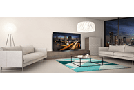 LG OLED65B8LLA OLED TV (Flat, 65 Zoll/164 cm, UHD 4K, SMART TV, webOS 4.0 (AI ThinQ))
