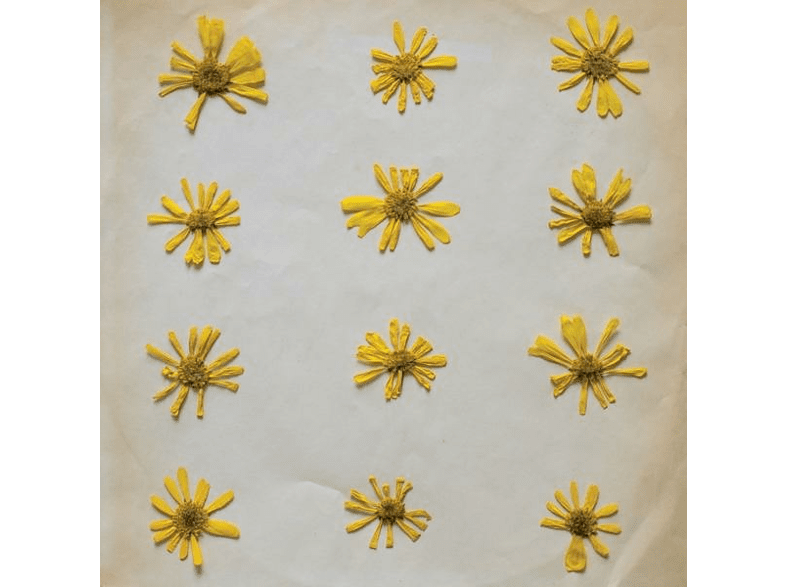 Molochs - Flowers In The Spring (Tape) [MC (analog)]