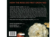 David Munderloh, Julian Behr, Silvia Tecardi - How the Rose did first grow red - Lieder [CD]