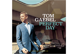 Tom Gaebel - Perfect Day - (Vinyl)