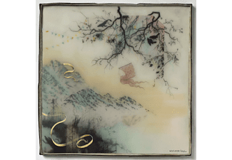 Novo Amor - BIRTHPLACE -DOWNLOAD- - (Vinyl)