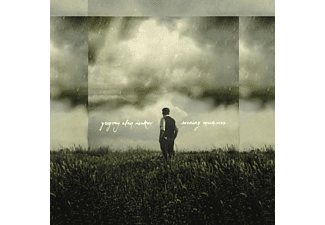 Gregory Alan Isakov - Evening Machines - (CD)