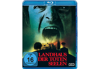 Landhaus der toten Seelen - Burnt Offerings - (Blu-ray)