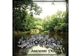 Nechochwen - The Ancient Pulse - (CD)