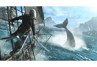 PC Assassin's Creed 4: Black Flag