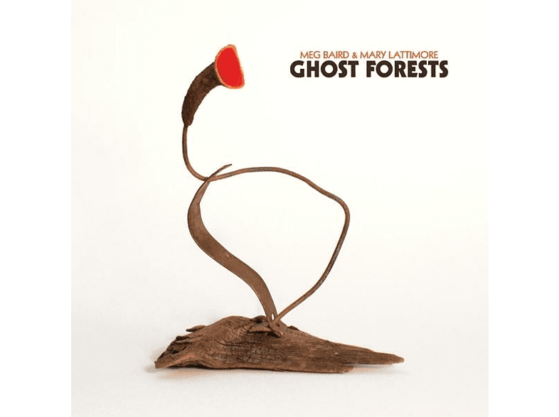 Meg Baird, Mary Latti - Ghost Forests [Vinyl]