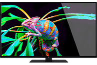 OK. ODL 55651U-TIB LED TV (Flat, 55 Zoll/140 cm, UHD 4K, SMART TV, Linux)