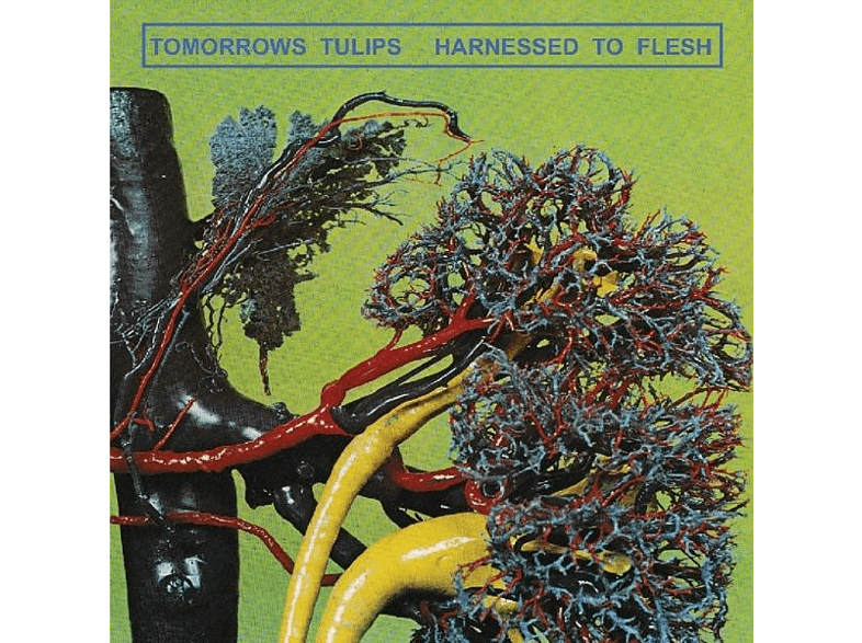 Tomorrow's Tulips - Harnessed To Flesh [CD]