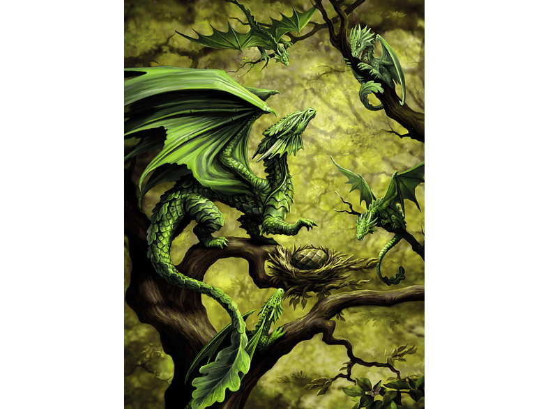 RAVENSBURGER Walddrache by Anne Stokes Puzzle