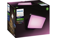 PHILIPS Hue White & Color Amb. Discover LED Flutlicht, Schwarz