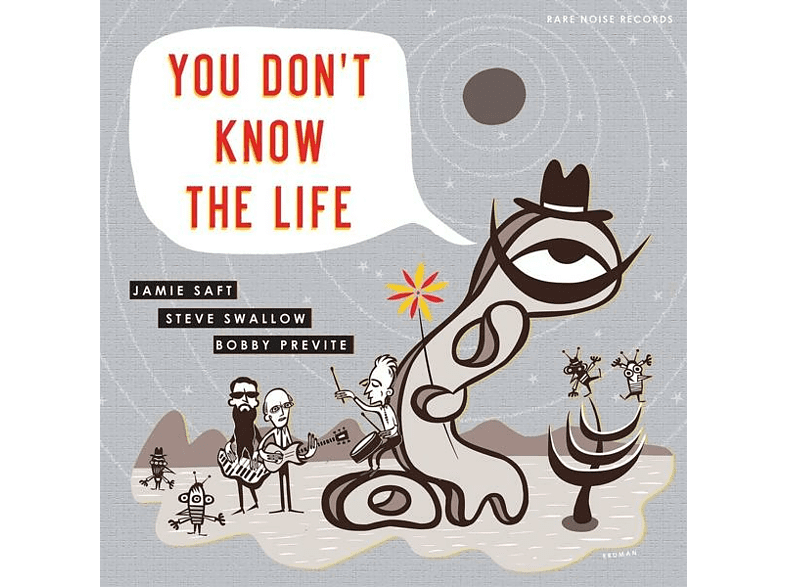 SAFT, JAMIE/SWALLOW, STEV - You Don't Know The Life [Vinyl]