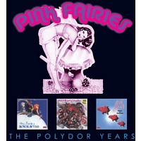 Pink Fairies - The Polydor Years [CD]