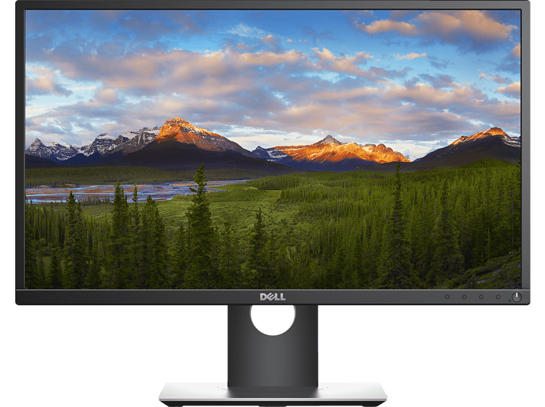 DELL P2417H 23.8 Zoll Full-HD Monitor (6 ms Reaktionszeit)