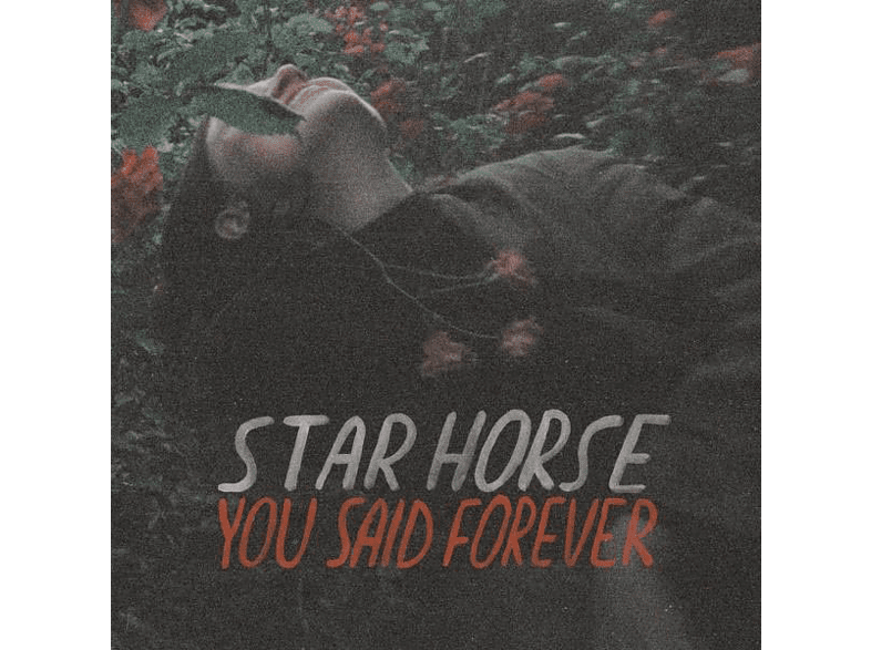 Star Horse - You Said Forever [Vinyl]
