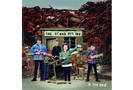 The Cranberries - IN THE END (PICTURE DISC) [Vinyl]