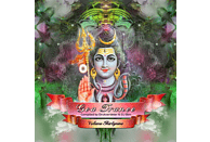 VARIOUS - Goa Trance Vol.39 [CD]