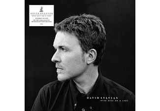 David Sylvian - Dead Bees On A Cake LP