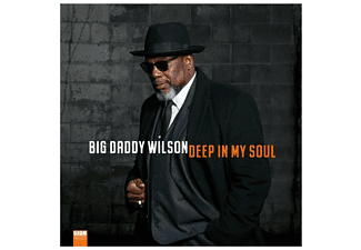 Big Daddy Wilson - Deep In My Soul (180g Vinyl) - (Vinyl)