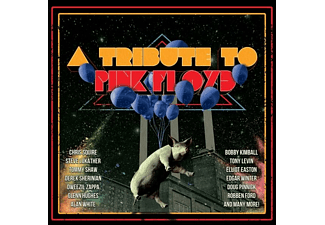 VARIOUS - TRIBUTE TO PINK FLOYD - (CD)